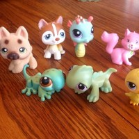 Littlest Pet Shop Animal Toy Collection