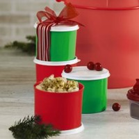 Tupperware | Mini Canister Set