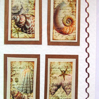 Sea Shell Hand-Crafted Layered Card - Blank for any Occasion (1562)