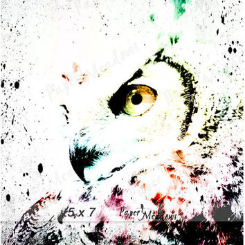 Graphic Owl Digital Download, Teen Wall Decor, Photo Download, Multi Colored, Funky, Art for kid's room, 5x7, 8x10, or 11x14 inch