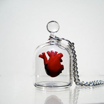 Anatomical Heart Necklace  Heart in a Jar by kivaford on Etsy
