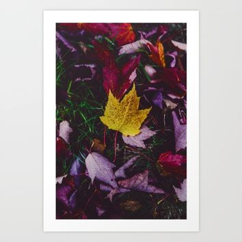 Autumnal Art Print by Mixed Imagery