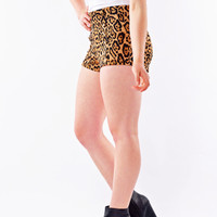 High-Waisted Cheetah Print Shorts