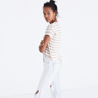 Whisper Cotton Crewneck Tee in Andy Stripe