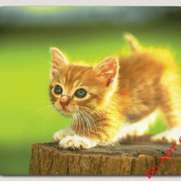 Gloden Playful Kitten great gift Cat pet  Lover Mousepad picture gift cute funny Let this kitten brighten your office space FREE SHIPPING