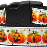 Pumpkin Parade Nylon Buckle Dog Collars and Leashes