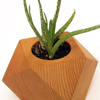 Geometric wood succulent holder, wood air plant holder, succulent holder, air plants, cactus holder, reclaimed wood, mother's day gift