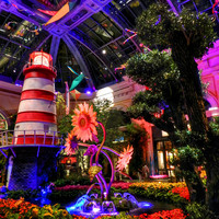 Las Vegas - Bellagio Conservatory And Botanical Gardens Photograph by Lance Vaughn - Las Vegas - Bellagio Conservatory And Botanical Gardens Fine Art Prints and Posters for Sale