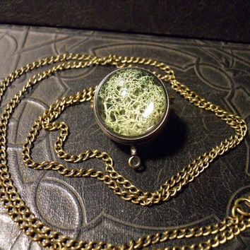 Dark Green Nature Moss Ball Glass Terrarium Orb Bronze Metal LONG Necklace