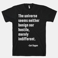 The Universe is Indifferent - Quote