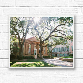 Charleston SC print, digital download photography, instant printable photography, live oak trees, South Carolina, southern architecture