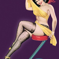Pin Up Art Brunette With Mesh Stockings And Poster