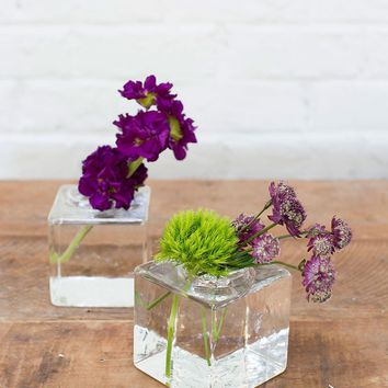 """Cadence Glass Cube Vase in Clear - 3.5"""" Tall x 3"""" Wide"""
