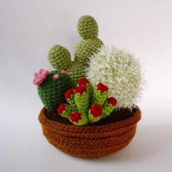 4-plant garden of realistic crocheted cacti and succulents (made to order)