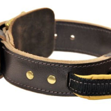 "Dean and Tyler ""SIMPLICITY"", Leather Dog Collar with Solid Brass Hardware - Brown - Size 24-Inch by 1-3/4-Inch - Fits Neck 22-Inch to 26-Inch"