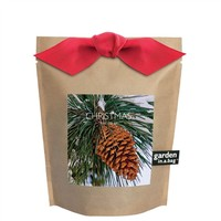 Garden In a Bag Scotch Pine Christmas Tree | bambeco
