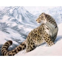 HOME BEAUTY 40x50cm picture paint on canvas diy digital oil painting by numbers drawing home decor craft animals snow GX7471