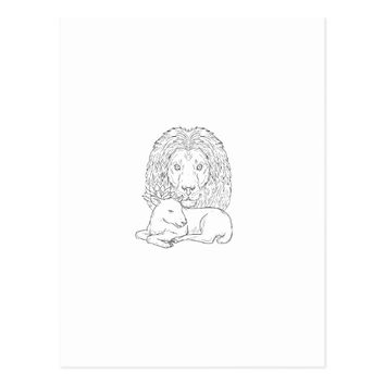 Lion Watching Over Sleeping Lamb Drawing Postcard