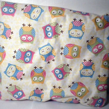 Owl iPad Case zipper owl ipad cover owl ipad by redmorningstudios