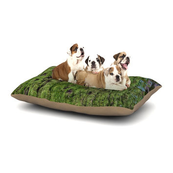 "Susan Sanders ""Emerald Moss"" Green Nature Dog Bed"