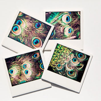 Peacock Coasters Polaroid Style Set of 4 by PIXELGRINphotography