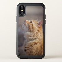 Ginger cat speck iPhone x case
