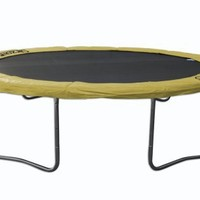 Airzone 13' Spring Trampoline