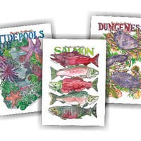 PNW Sealife Variety Pack Greeting Cards and Envelopes - 3 Pack