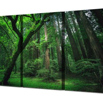 Green Trees Forest  Framed UNframed canvas wall art panel print 3 Panel