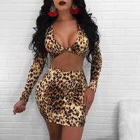 Leopard Two Piece  Dress