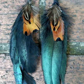 Feather Earrings  with Black shiny Loop Cocktail with Ringneck Pheasant