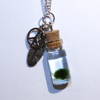 nano MARIMO moss ball jar necklace with silver charms