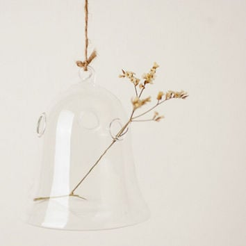 suspension glass vase
