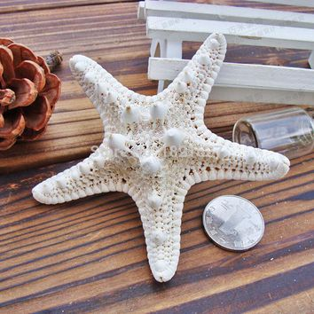10pcs 4-7cm white natural Air Dried starfish sea star Beach Themed Wedding Table Decoration Christmas Party Favors sea shells