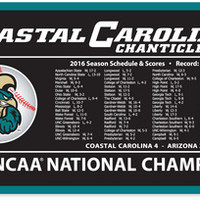 National Champions Banner