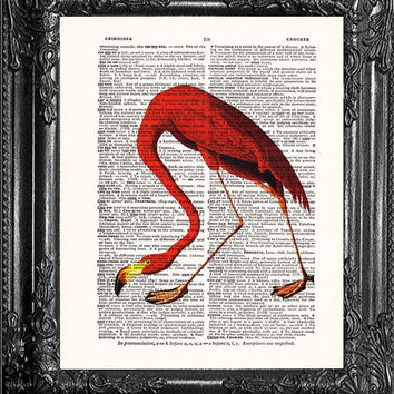 FLAMINGO ART-Dictionary Print Book Print Page Art-Upcycled Antique Book Page-Bird Print On Dictionary Book Page-Upcycled Book Page Art Print