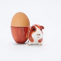 Dutch Guinea Pig Egg Cup - Urban Outfitters