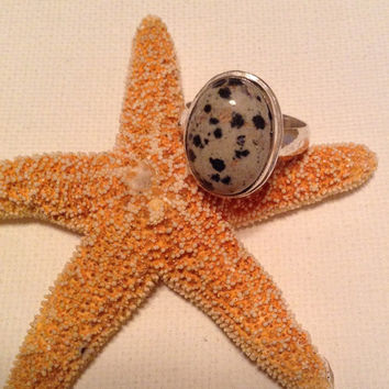 Dalmatian jasper ring, size 9 ring, jasper ring set in 925 silver plated setting, spotted stone ring, stone lovers