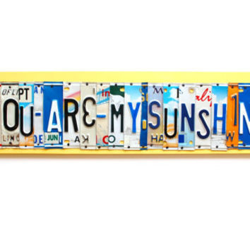 You Are My SUNSHINE, OOAK License Plate Art - mothers day gift, recycled Home Decor, custom valentines day, unique  wedding, anniversary