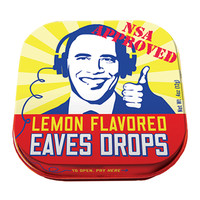 NSA APPROVED EAVES DROPS