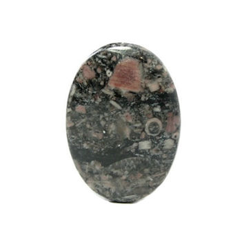 Fossil Crinoid Sea Lily,  Ancient Life Polished Semiprecious Black, Rose Pink Gem Stone Cabochon, Organic Semi precious Gemstone, DIY Jewel