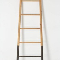 Submergent Ladder: Remodelista