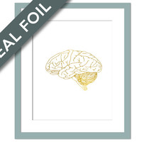 Human Brain Anatomical Real Gold Foil Art Print - Anatomy Wall Art - Anatomical Poster - Medical Art - Brain Art Print - Anatomy Poster