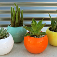 Bubble ceramic planter