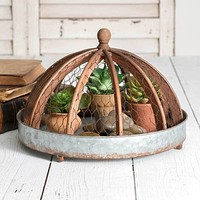 Round Tray with Chicken Wire Cloche