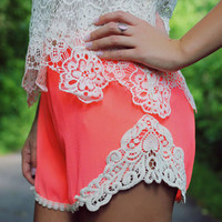 Pink Lace Embroidered Shorts