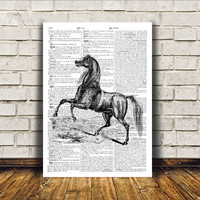 Dictionary print Animal art Horse poster Modern decor RTA125