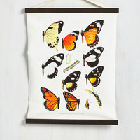 Dorm Decor Butterfly Bliss Wall Hanging by ModCloth