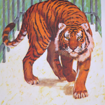 Teaching Pictures Tiger Picture Tiger Art Zoo Art Zoo Nursery Classroom Poster Safari Nursery