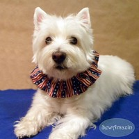 Stars and Stripes Patriotic Dog Scrunchie Neck Ruffle, 16 inch neck